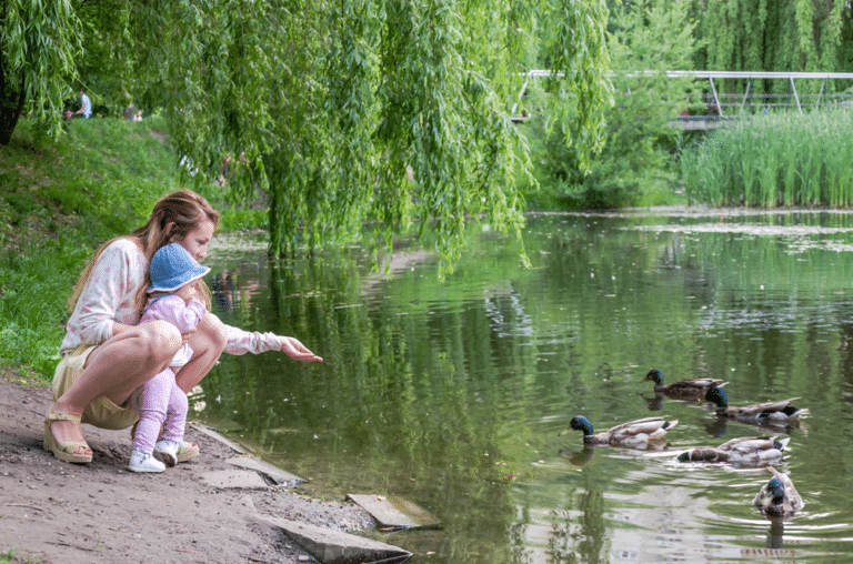 Mother and daughter feeding ducks